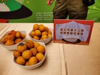 201012-生活祭啟動記者會_201012_84