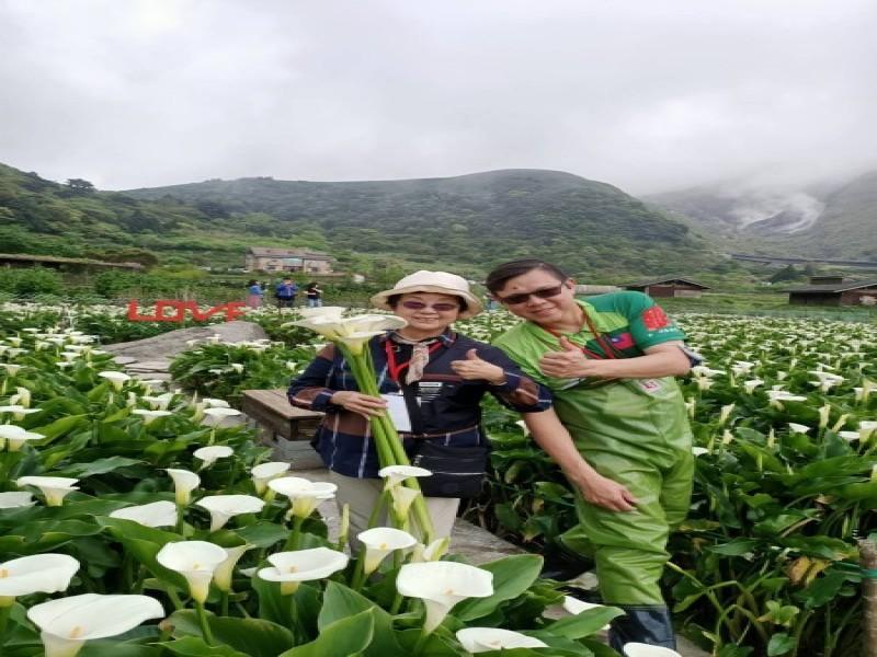 210326-竹子湖海芋季採海芋ㄧ日遊_210326_2