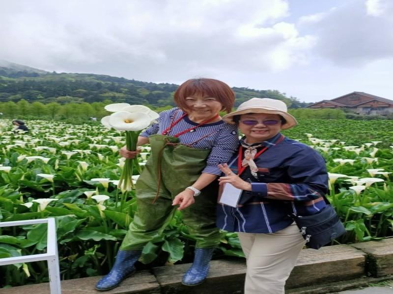 210326-竹子湖海芋季採海芋ㄧ日遊_210326_3